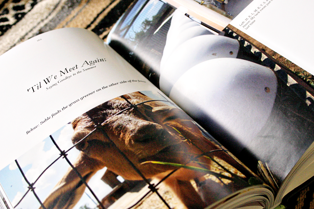 Open photobook showing photos of a goat and horse riding helmets