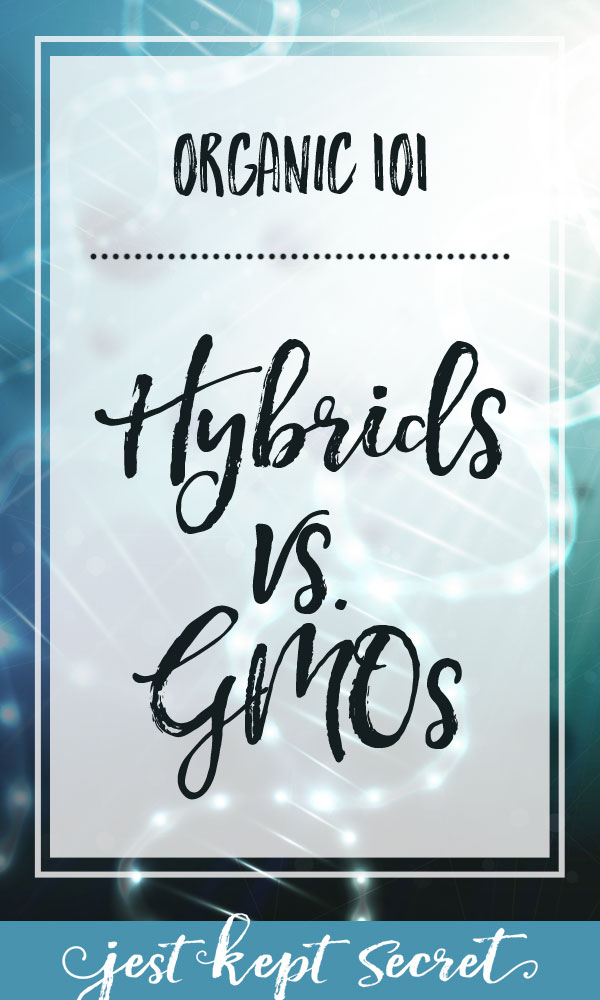 Organic 101: GMOs vs. Hybrids | Jest Kept Secret