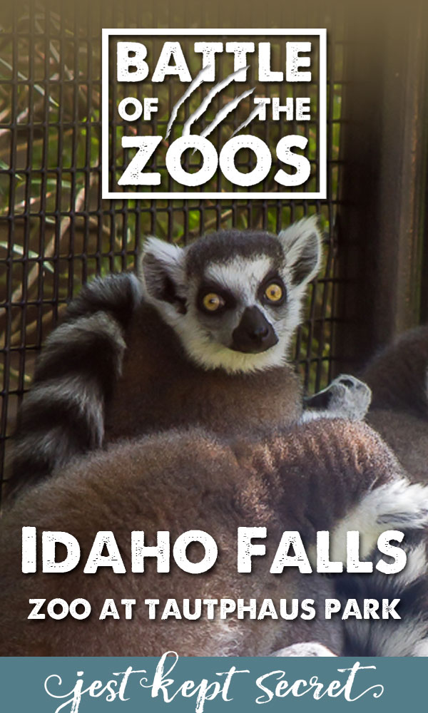 Battle of the Zoos: Idaho Falls Zoo at Tautphaus Park | Jest Kept Secret