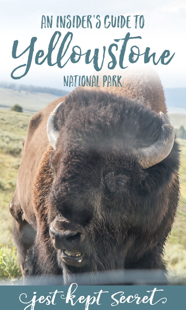 An Insider's Guide to Yellowstone National Park | Jest Kept Secret