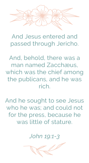 Luke 19:1-3 And Jesus entered and passed through Jericho. And, behold, there was a man named Zacchæus, which was the chief among the publicans, and he was rich. And he sought to see Jesus who he was; and could not for the press, because he was little of stature.