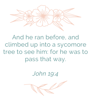 Luke 19:4 - And he ran before, and climbed up into a sycomore tree to see him: for he was to pass that way.
