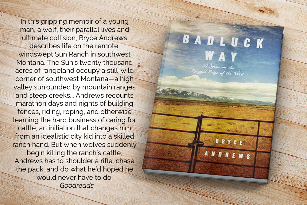 In this gripping memoir of a young man, a wolf, their parallel lives and ultimate collision, Bryce Andrews describes life on the remote, windswept Sun Ranch in southwest Montana. The Sun's twenty thousand acres of rangeland occupy a still-wild corner of southwest Montana—a high valley surrounded by mountain ranges and steep creeks... Andrews recounts marathon days and nights of building fences, riding, roping, and otherwise learning the hard business of caring for cattle, an initiation that changes him from an idealistic city kid into a skilled ranch hand. But when wolves suddenly begin killing the ranch's cattle, Andrews has to shoulder a rifle, chase the pack, and do what he'd hoped he would never have to do.