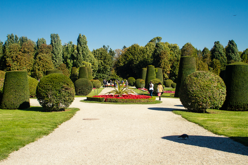 Garden with topiaries and a walking path