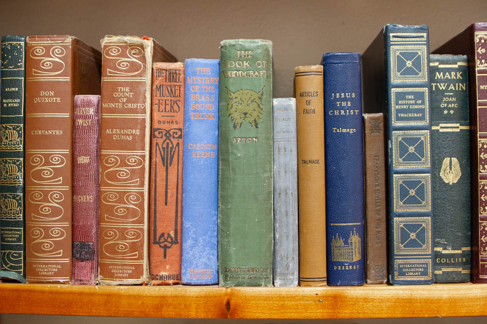 A colorful collection of antique books lined up on a shelf
